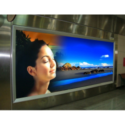 Front Printing Backlit PET Film Waterproof