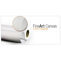 Art Canvas Matt Polyester Waterproof