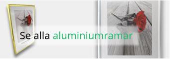 Aluminiumramar